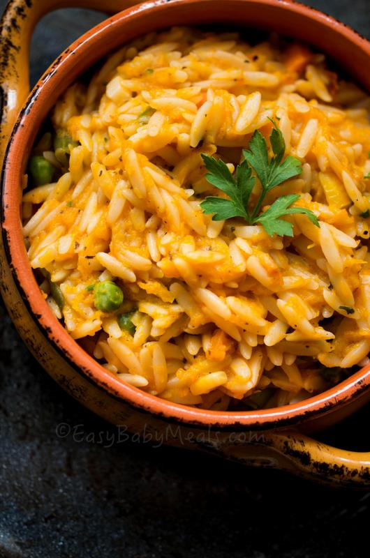 Pumpkin with Orzo Pasta