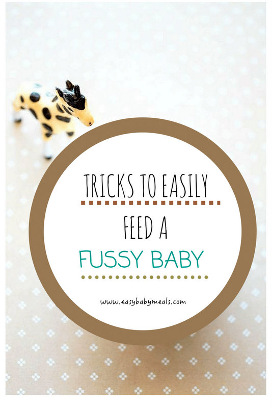 Tricks To Easily Feed A Fussy Baby